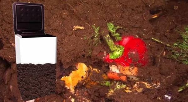 Composteira automática promete facilitar a vida de quem quer reciclar materiais orgânicos em casa