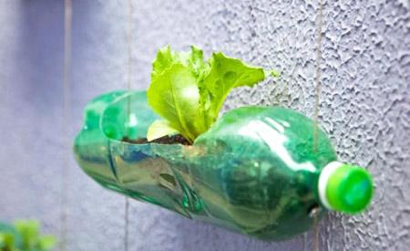 Faça Você Mesmo: Horta vertical com garrafas PET reutilizadas